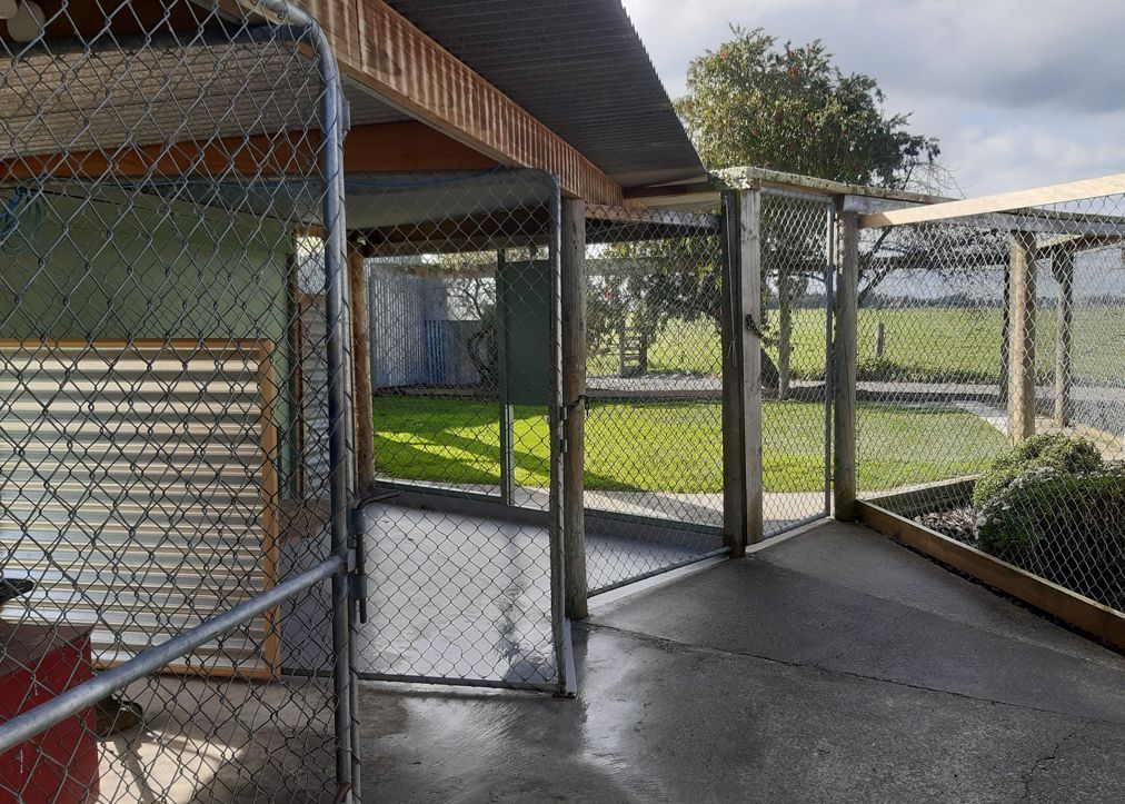 Heisenberg Kennels Facilities